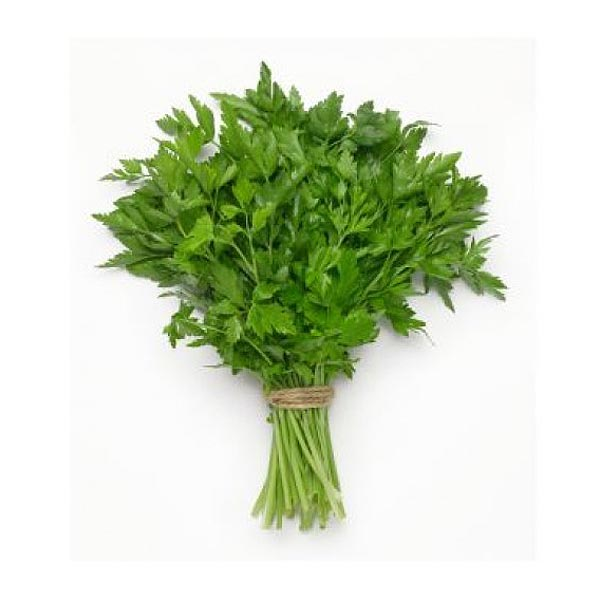Continental Parsley - Market