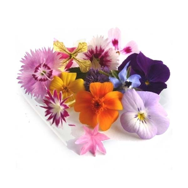 Edible Flowers Assorted - Punnet