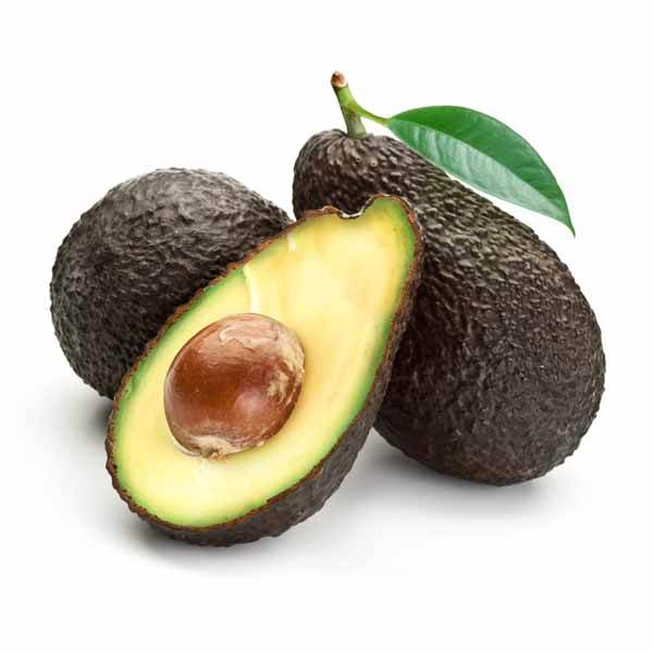 Avocado - Hass large - Each